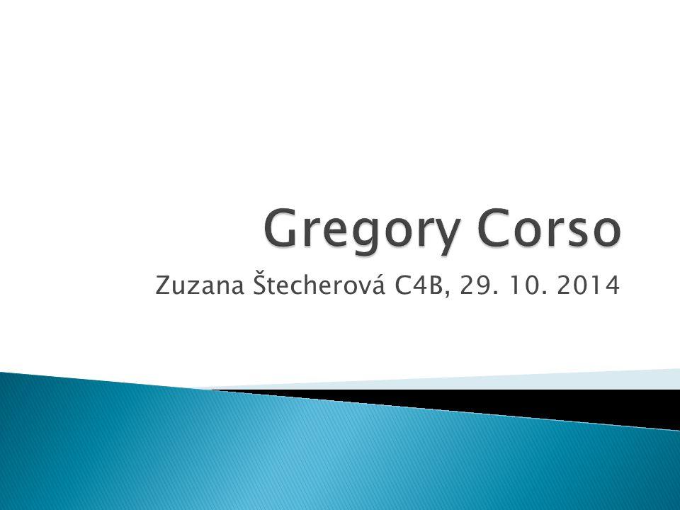 Zuzana Štecherová C4B, 29. 10. 2014