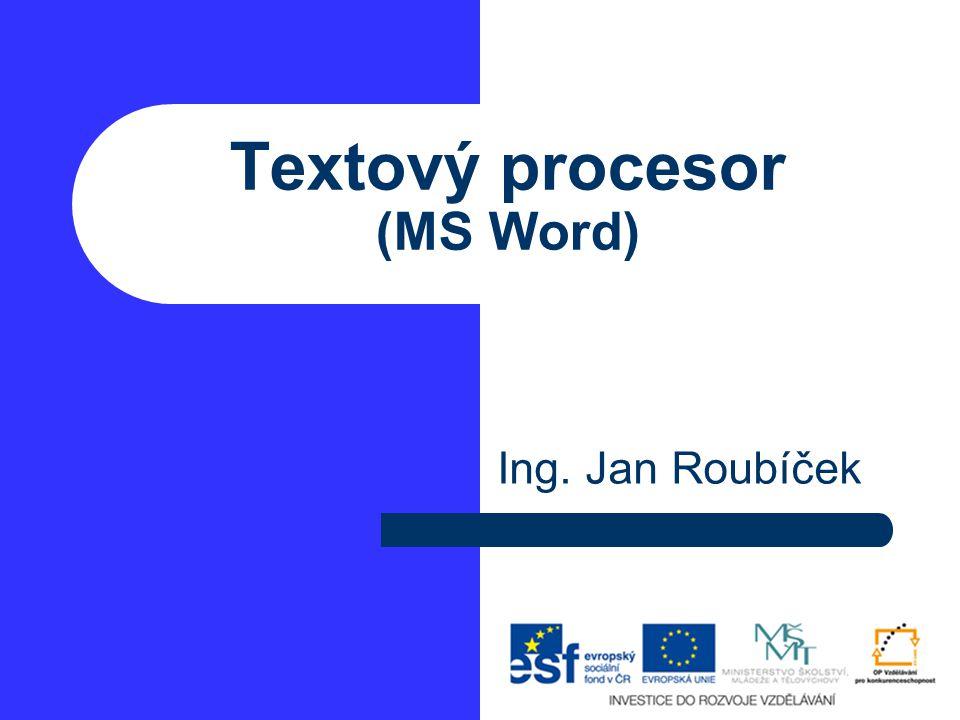 Textový procesor (MS Word) Ing. Jan Roubíček