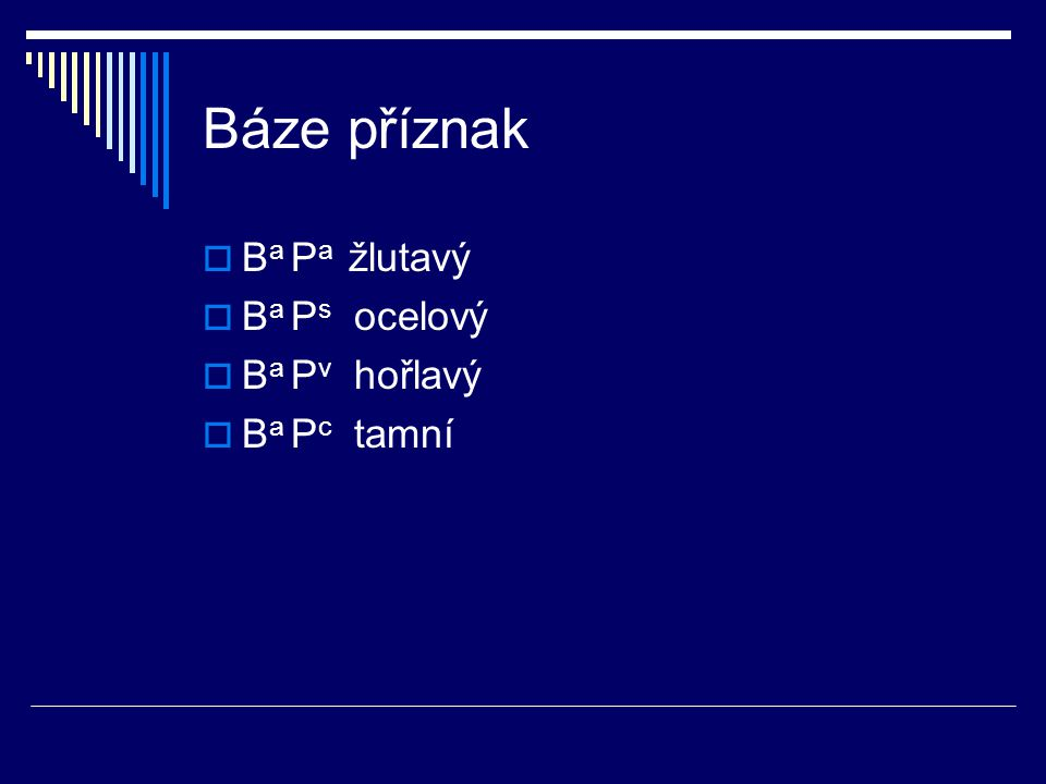 Báze příznak  B a P a žlutavý  B a P s ocelový  B a P v hořlavý  B a P c tamní