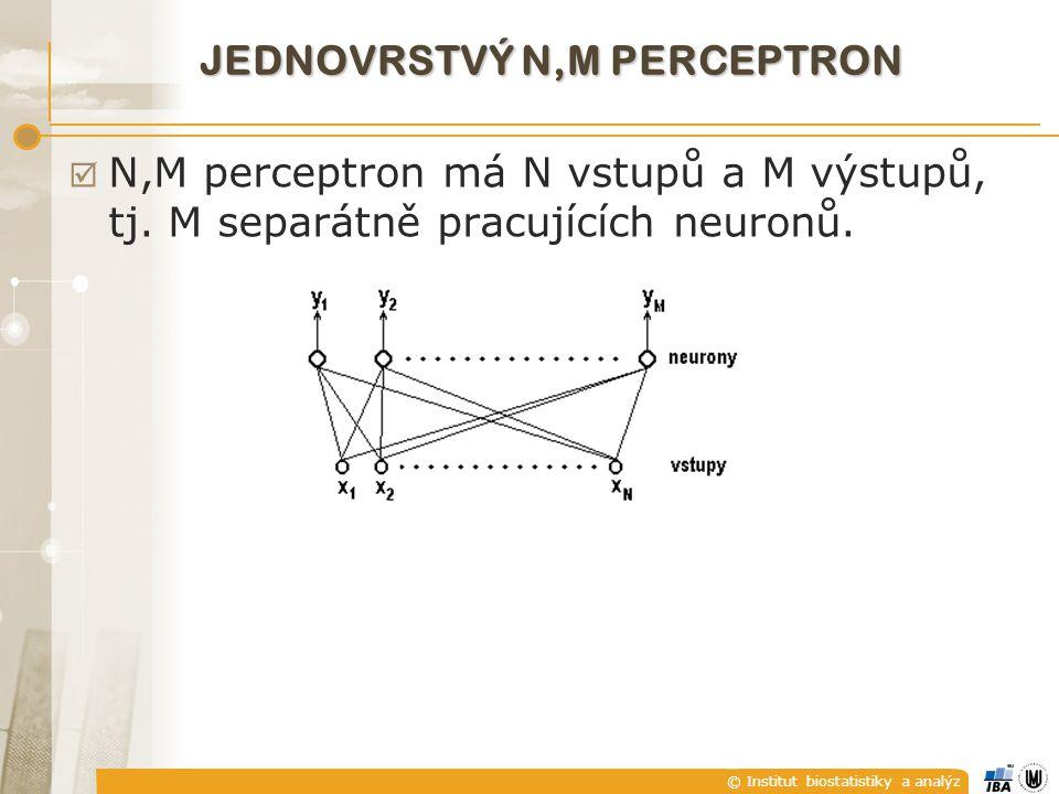 © Institut biostatistiky a analýz JEDNOVRSTVÝ N,M PERCEPTRON  N,M perceptron má N vstupů a M výstupů, tj.