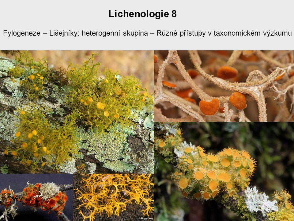 Lichenologie 8 Fylogeneze – Lišejníky: heterogenní skupina – Různé přístupy v taxonomickém výzkumu