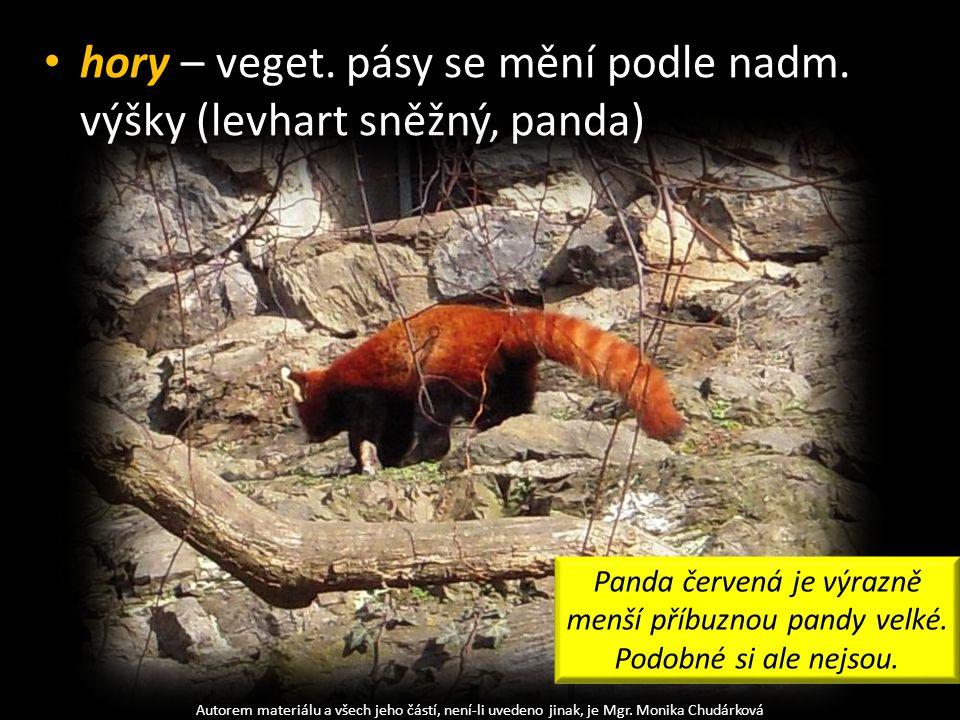 hory – veget. pásy se mění podle nadm. výšky (levhart sněžný, panda) Autorem materiálu a všech jeho částí, není-li uvedeno jinak, je Mgr. Monika Chudá
