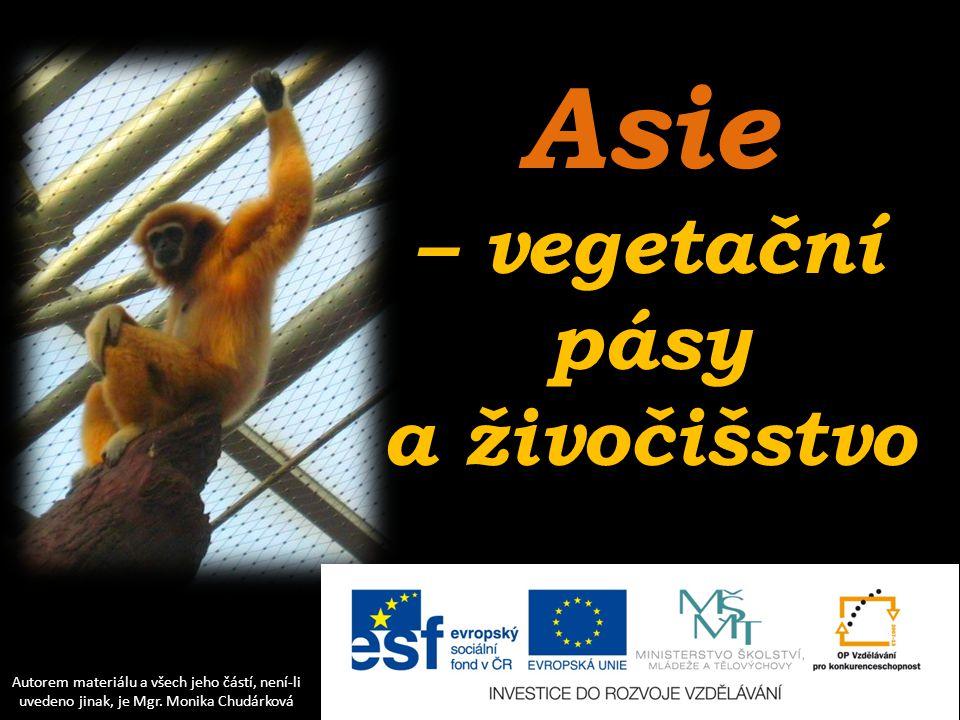 Asie – vegetační pásy a živočišstvo Autorem materiálu a všech jeho částí, není-li uvedeno jinak, je Mgr. Monika Chudárková
