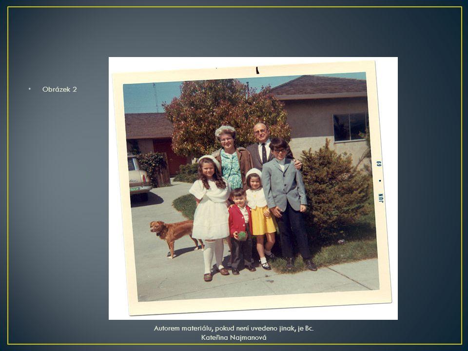 Obrázek 2 Autorem materiálu, pokud není uvedeno jinak, je Bc. Kateřina Najmanová