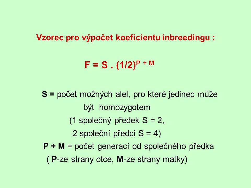 Vzorec pro výpočet koeficientu inbreedingu : F = S. (1/2) P + M S = počet možných alel, pro které jedinec může být homozygotem (1 společný předek S =