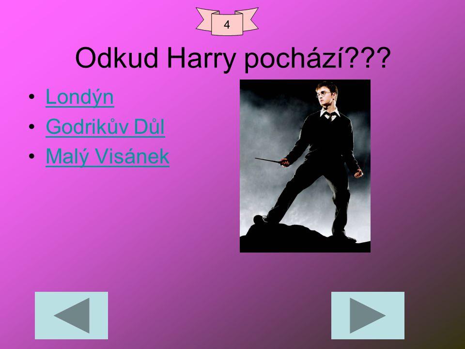 Odkud Harry pochází??? Londýn Godrikův Důl Malý Visánek 4