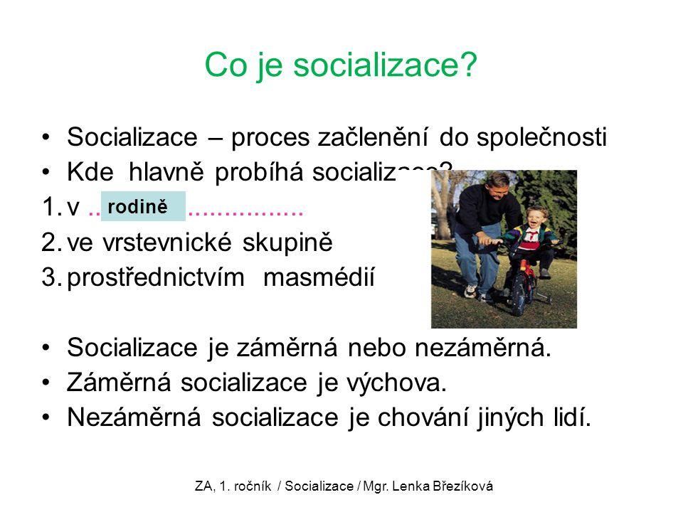 Co je socializace? Socializace – proces začlenění do společnosti Kde hlavně probíhá socializace? 1.v.............................. 2.ve vrstevnické sk