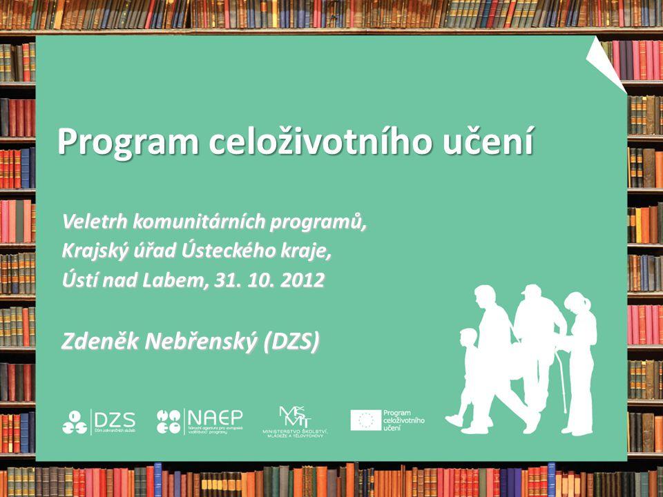 Program celoživotního učení Comenius primární a sekundární vzděláváníErasmus vysokoškolské vzdělávání Leonardo da Vinci odborné vzdělávání a přípravaGrundtvig vzdělávání dospělých a celoživotní učení Průřezový program 4 klíčové aktivity – vývoj politiky; jazykové vzdělávání; informační a komunikační technologie; diseminace Program Jean Monnet podpora výuky, výzkumu a diskuze v oblasti studií evropské integrace na úrovni vysokoškolských institucí Průřezový program 4 klíčové aktivity – vývoj politiky; jazykové vzdělávání; informační a komunikační technologie; diseminace
