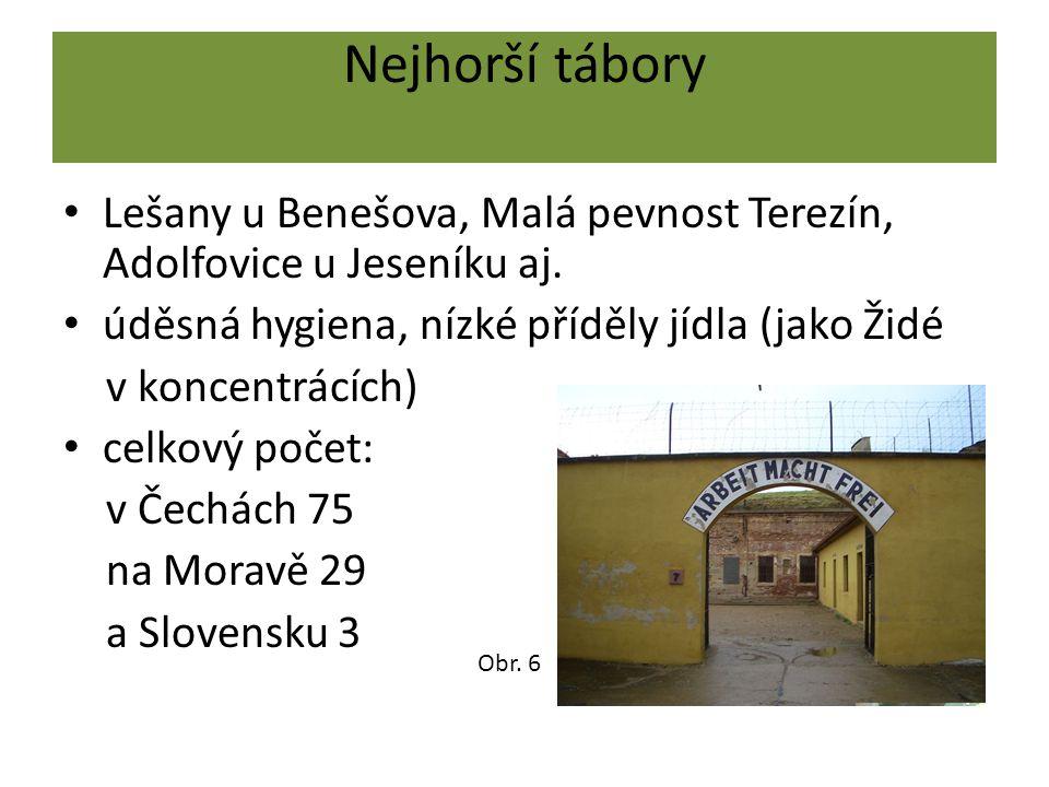 Nejhorší tábory Lešany u Benešova, Malá pevnost Terezín, Adolfovice u Jeseníku aj. úděsná hygiena, nízké příděly jídla (jako Židé v koncentrácích) cel