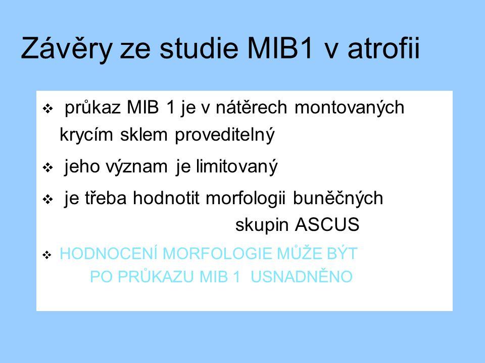 Závěry ze studie MIB1 v atrofii  průkaz MIB 1 je v nátěrech montovaných krycím sklem proveditelný  jeho význam je limitovaný  je třeba hodnotit mor