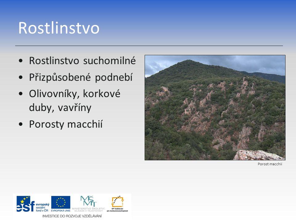 Rostlinstvo Rostlinstvo suchomilné Přizpůsobené podnebí Olivovníky, korkové duby, vavříny Porosty macchií Porost macchií