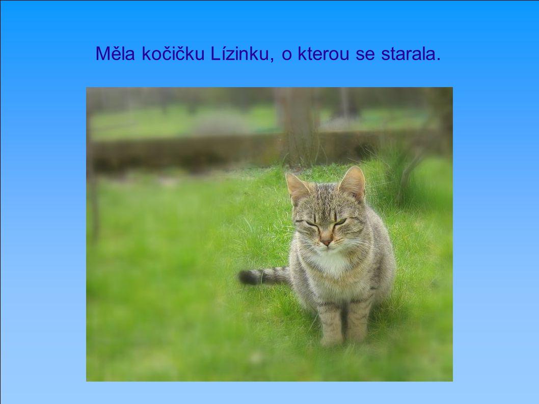 Měla kočičku Lízinku, o kterou se starala.
