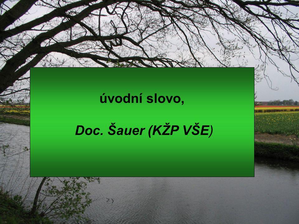 úvodní slovo, Doc. Šauer (KŽP VŠE)