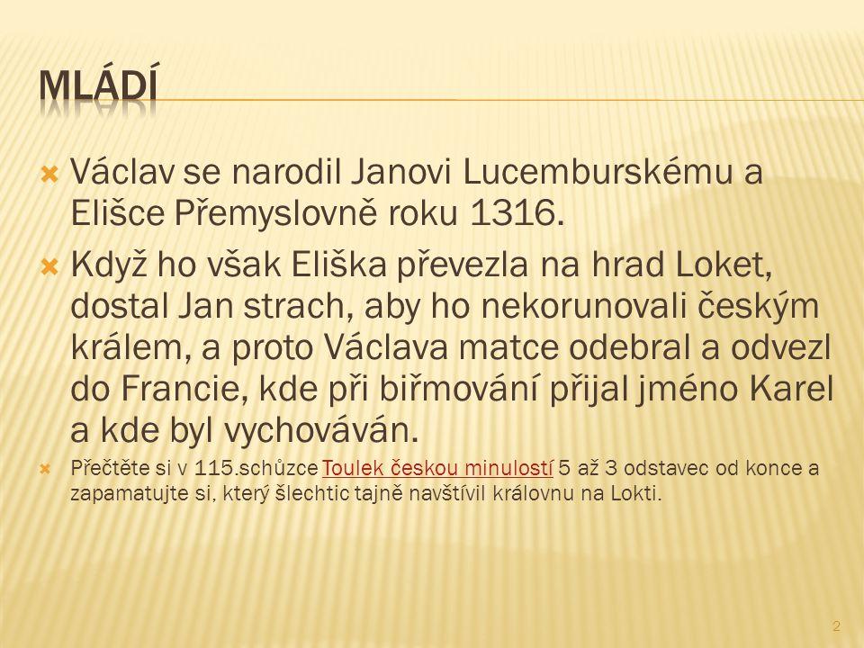  Václav se narodil Janovi Lucemburskému a Elišce Přemyslovně roku 1316.