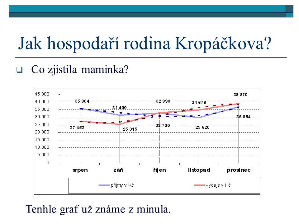 Jak hospodaří rodina Kropáčkova  Co zjistila maminka Tenhle graf už známe z minula.