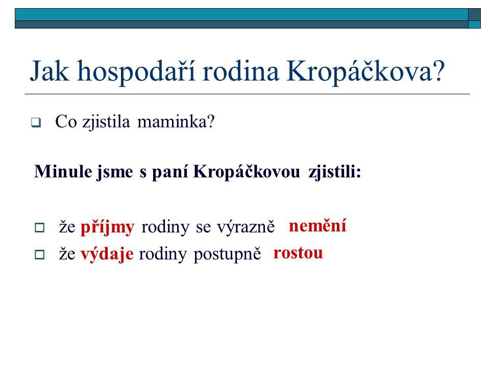 Jak hospodaří rodina Kropáčkova.  Co zjistila maminka.