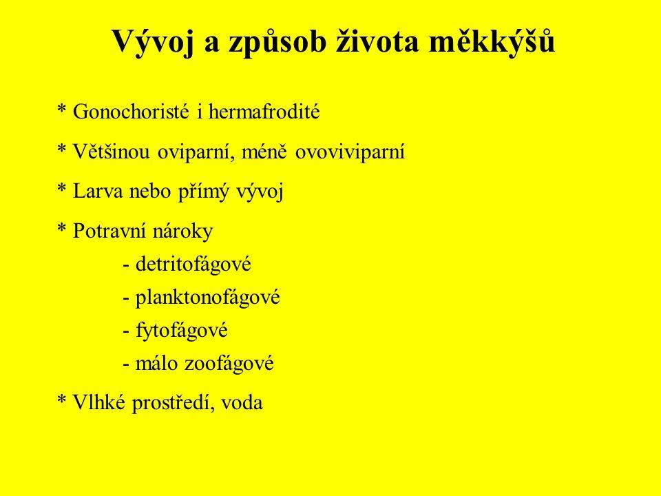 Vývoj a způsob života měkkýšů * Gonochoristé i hermafrodité * Většinou oviparní, méně ovoviviparní * Larva nebo přímý vývoj * Potravní nároky - detrit