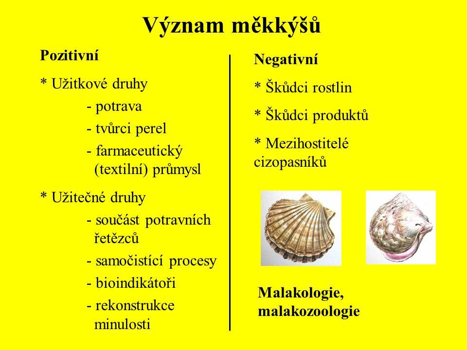 Význam měkkýšů Pozitivní * Užitkové druhy - potrava - tvůrci perel - farmaceutický (textilní) průmysl * Užitečné druhy - součást potravních řetězců -