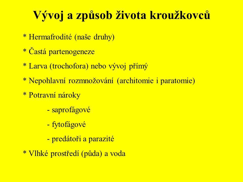 Vývoj a způsob života kroužkovců * Hermafrodité (naše druhy) * Častá partenogeneze * Larva (trochofora) nebo vývoj přímý * Nepohlavní rozmnožování (ar