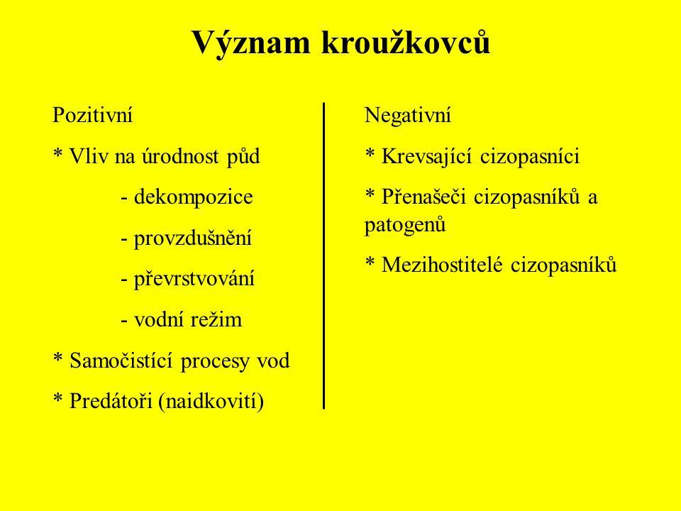 Význam kroužkovců Pozitivní * Vliv na úrodnost půd - dekompozice - provzdušnění - převrstvování - vodní režim * Samočistící procesy vod * Predátoři (n