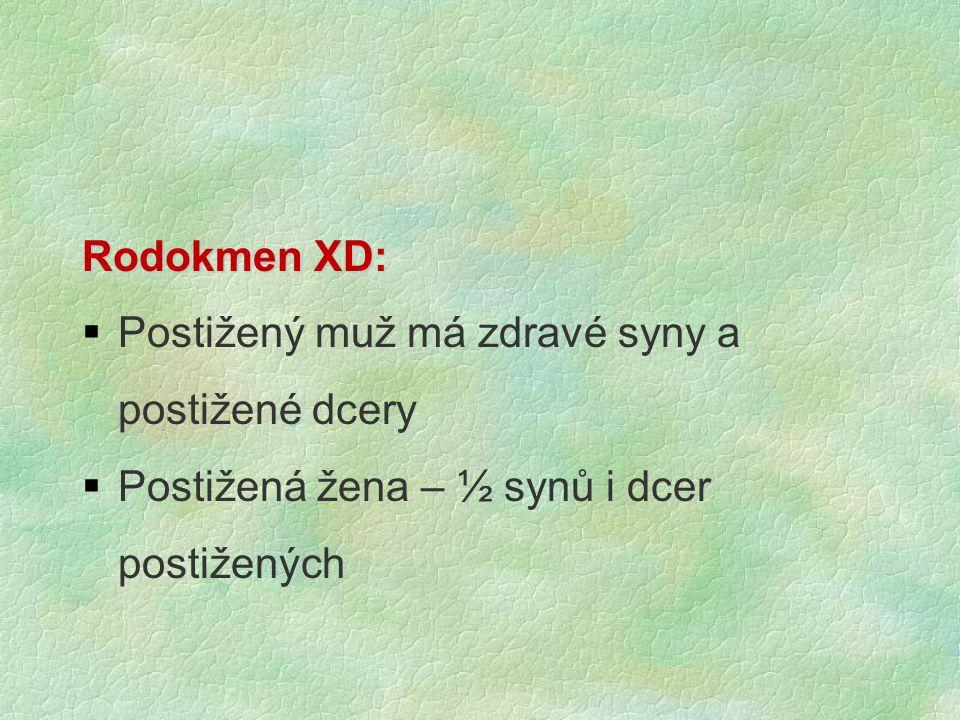 Rodokmen XD:  Postižený muž má zdravé syny a postižené dcery  Postižená žena – ½ synů i dcer postižených