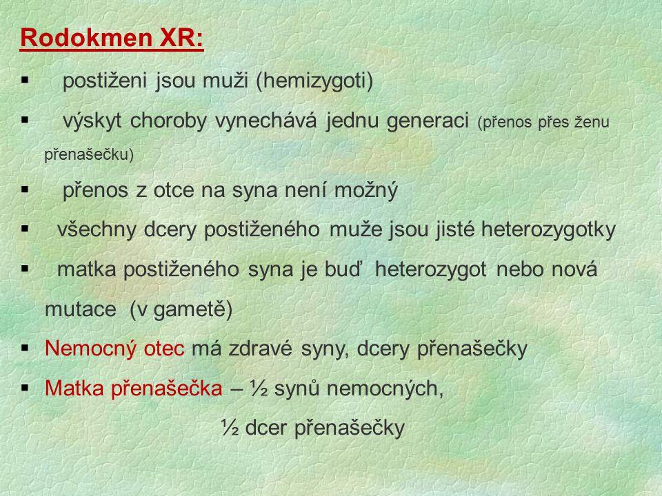 Rodokmen XR:   postiženi jsou muži (hemizygoti)  výskyt choroby vynechává jednu generaci (přenos přes ženu přenašečku)  přenos z otce na syna není
