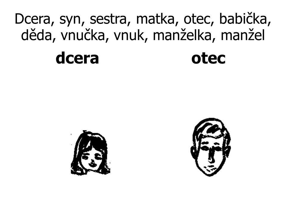 Dcera, syn, sestra, matka, otec, babička, děda, vnučka, vnuk, manželka, manžel dceraotec