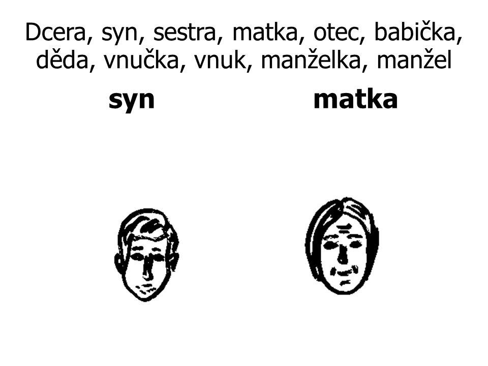 Dcera, syn, sestra, matka, otec, babička, děda, vnučka, vnuk, manželka, manžel synmatka