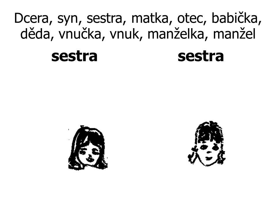 Dcera, syn, sestra, matka, otec, babička, děda, vnučka, vnuk, manželka, manžel sestra