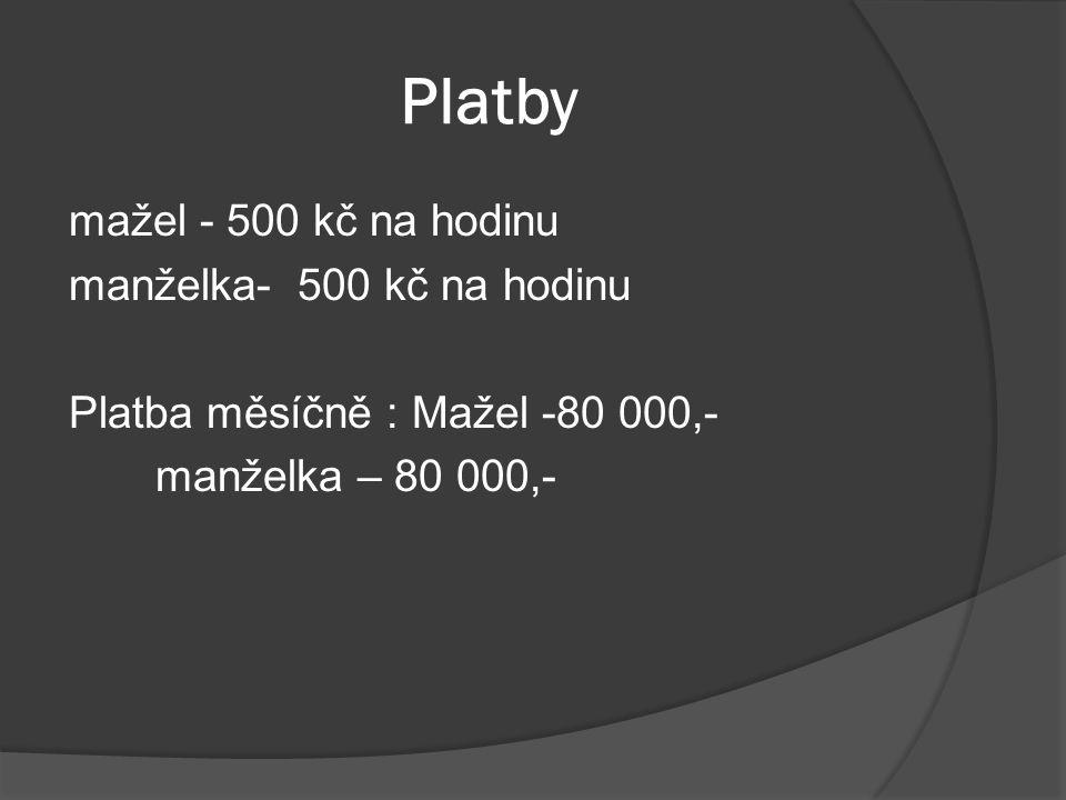 Platby mažel - 500 kč na hodinu manželka- 500 kč na hodinu Platba měsíčně : Mažel -80 000,- manželka – 80 000,-