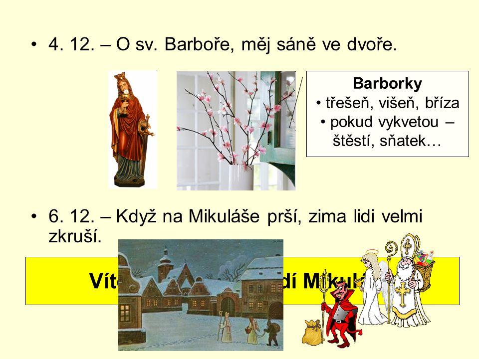 4. 12. – O sv. Barboře, měj sáně ve dvoře. 6. 12. – Když na Mikuláše prší, zima lidi velmi zkruší. Víte, který den chodí Mikuláš? Barborky třešeň, viš