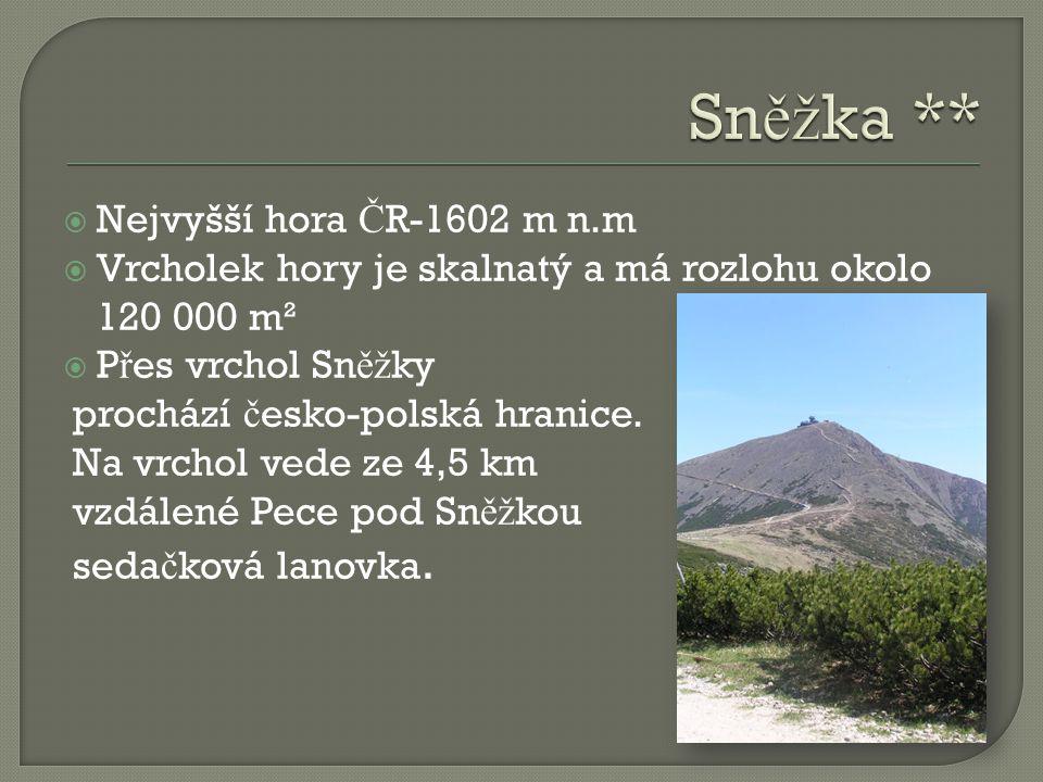  Nejvyšší hora Č R-1602 m n.m  Vrcholek hory je skalnatý a má rozlohu okolo 120 000 m²  P ř es vrchol Sn ěž ky prochází č esko-polská hranice. Na v