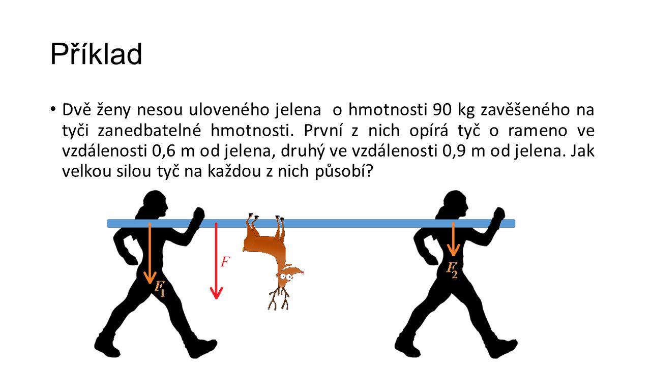Příklad Dvě ženy nesou uloveného jelena o hmotnosti 90 kg zavěšeného na tyči zanedbatelné hmotnosti.