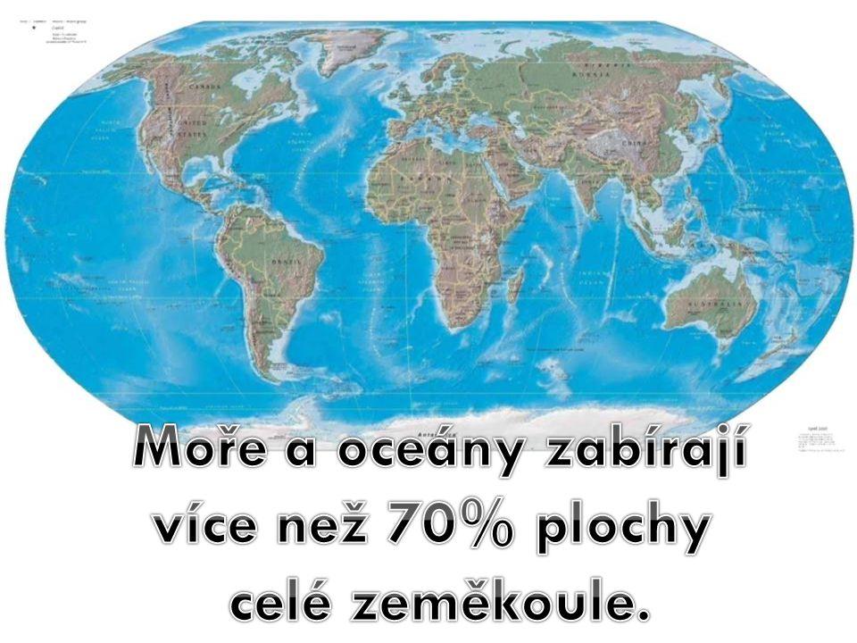 """Závěr: 1)Popiš ekosystém """"moře a oceány .Kdo je hlavními producenty v tomto ekosystému."""