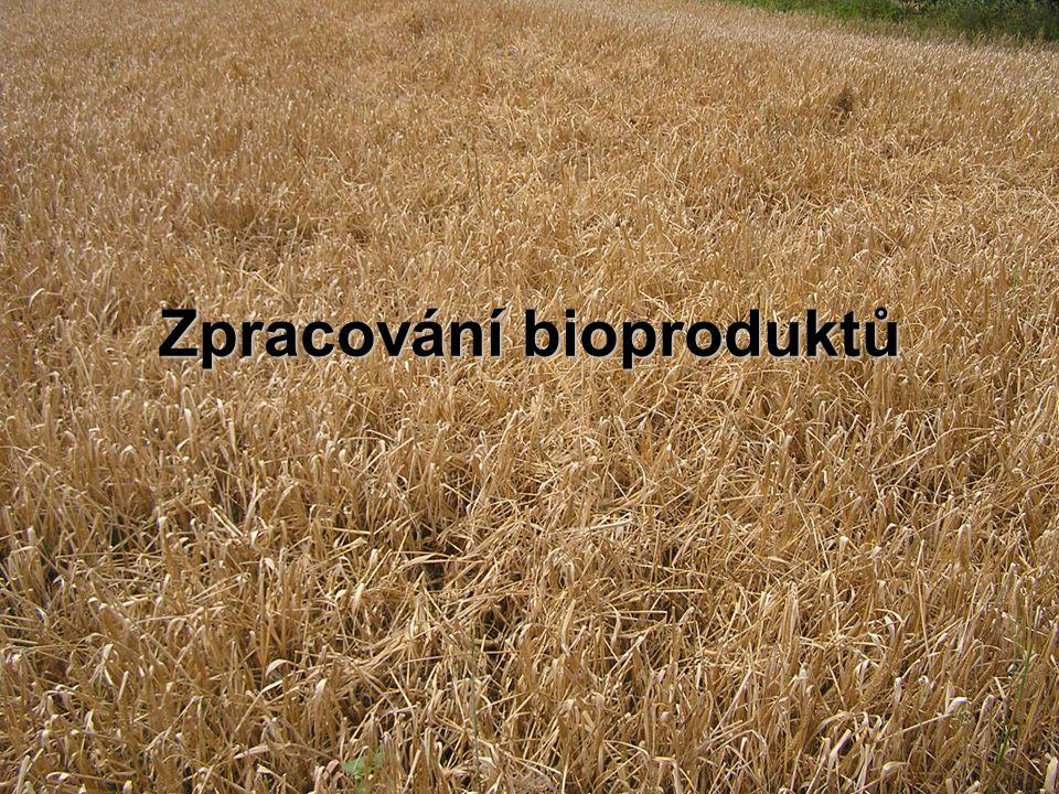 Zpracování bioproduktů