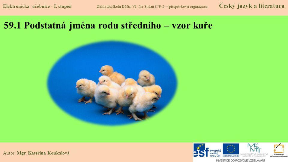 59.1 Podstatná jména rodu středního – vzor kuře Elektronická učebnice - I.