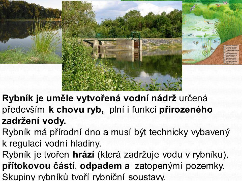 Rybník je uměle vytvořená vodní nádrž určená především k chovu ryb, plní i funkci přirozeného zadržení vody.