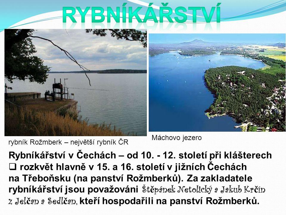 Rybníkářství v Čechách – od 10.- 12. století při klášterech  rozkvět hlavně v 15.