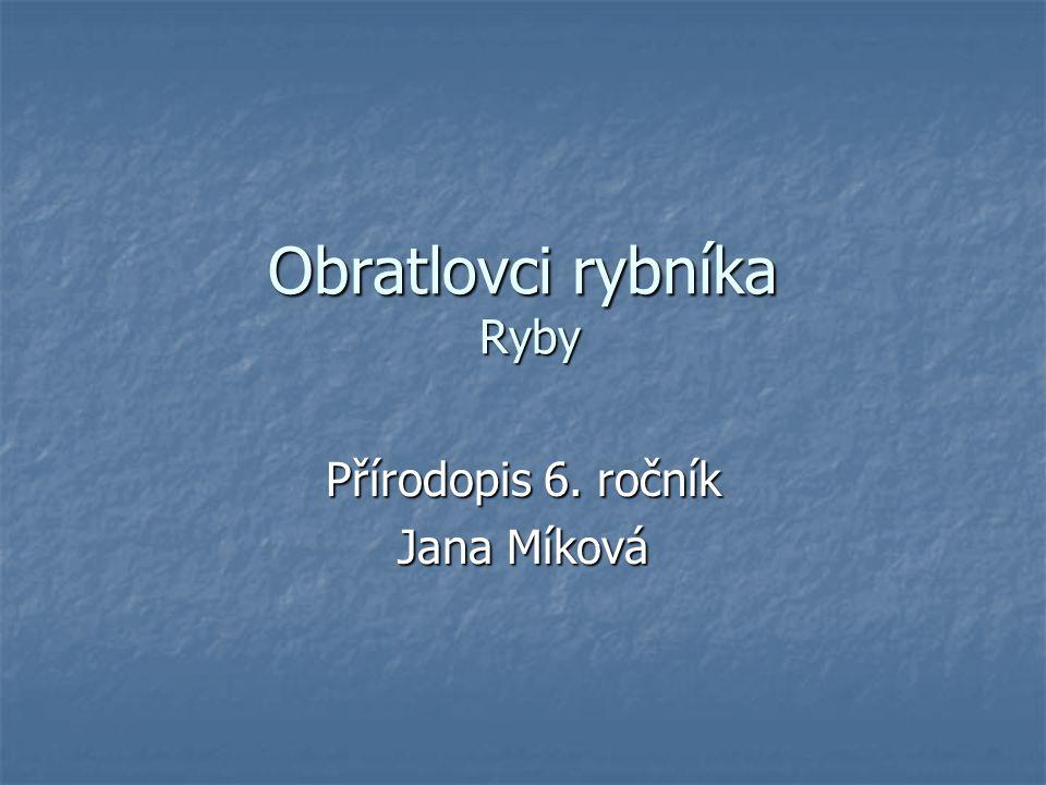 Obratlovci rybníka Ryby Přírodopis 6. ročník Jana Míková