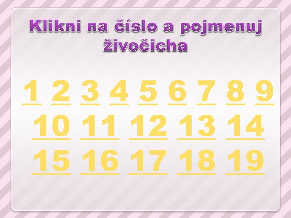 11 2 3 4 5 6 7 8 9 10 11 12 13 14 15 16 17 18 1923456789 1011121314 1516171819