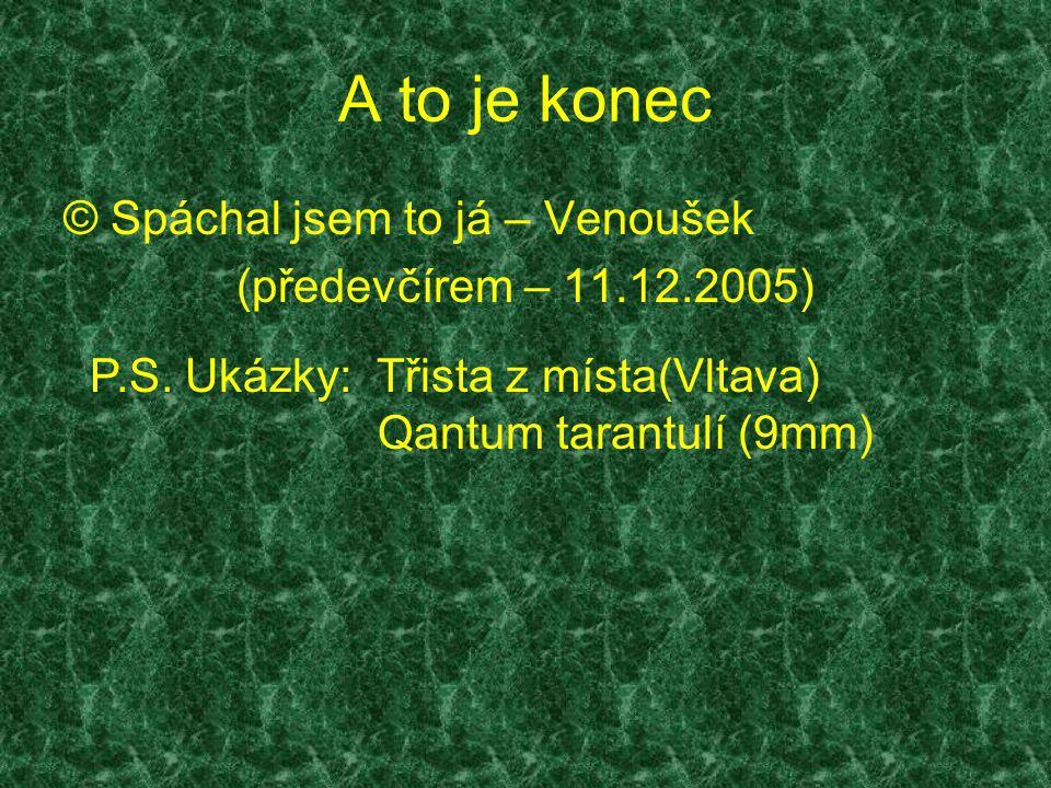 A to je konec © Spáchal jsem to já – Venoušek (předevčírem – 11.12.2005) P.S. Ukázky: Třista z místa(Vltava) Qantum tarantulí (9mm)