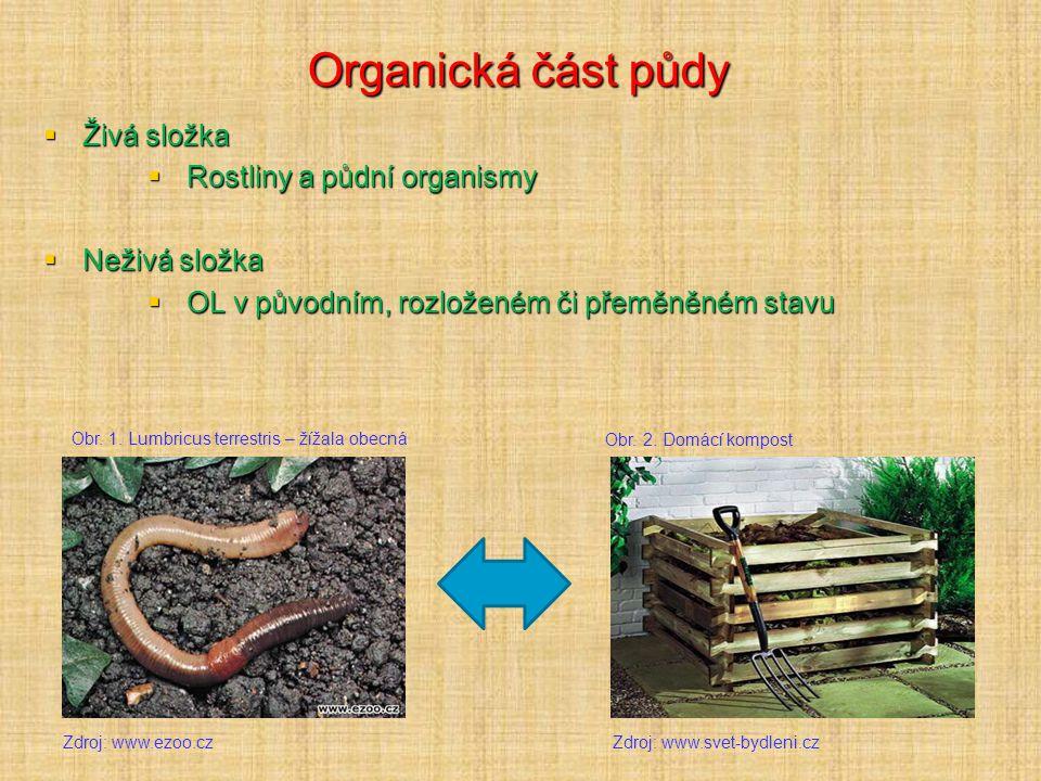 Organická část půdy  Živá složka  Rostliny a půdní organismy  Neživá složka  OL v původním, rozloženém či přeměněném stavu Zdroj: www.ezoo.cz Obr.