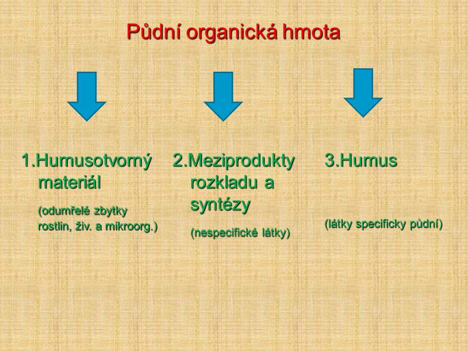 Půdní organická hmota  Veškerá spalitelná hmota v půdě  Soubor neživých organických látek  Složitý, heterogenní, polydispersní soubor OL různého původu  Neustálá přeměna – dána charakterem OL, činností půdních org., počasím, půdním reakcí, redox podmínkami  Různé stupně rozkladu či syntézy – primární, rozložené a sekundární OL  Přeměna směruje k rovnovážnému stavu – půdní typ – půdotvorný proces