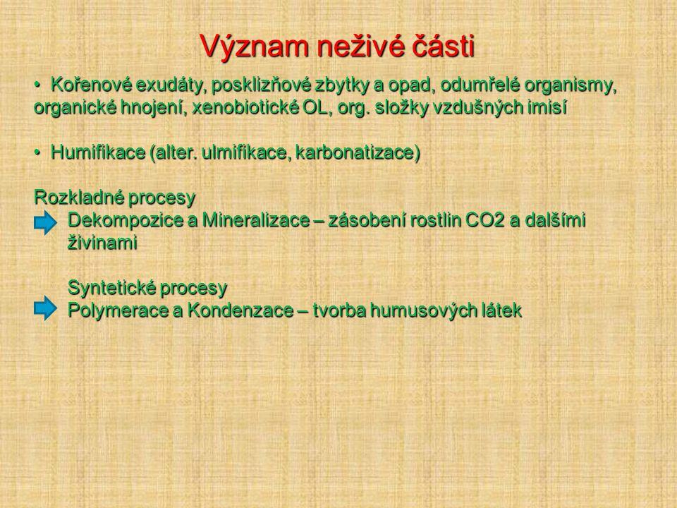 Půdní organická hmota 1.Humusotvorný materiál (odumřelé zbytky rostlin, živ. a mikroorg.) 2.Meziprodukty rozkladu a syntézy (nespecifické látky) 3.Hum