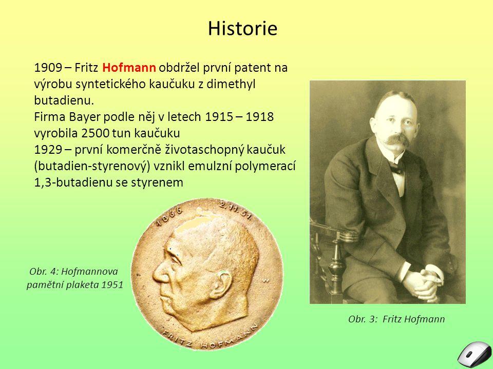 Historie 1909 – Fritz Hofmann obdržel první patent na výrobu syntetického kaučuku z dimethyl butadienu. Firma Bayer podle něj v letech 1915 – 1918 vyr