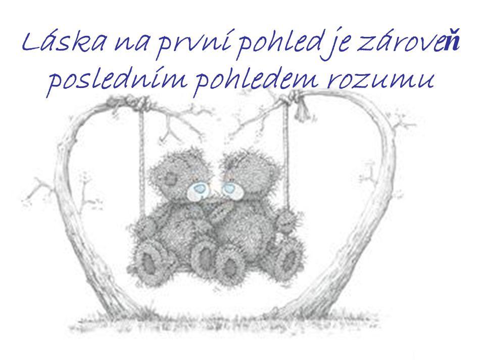 Láska na první pohled je zárove ň posledním pohledem rozumu