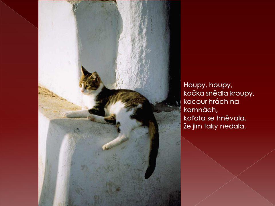 Houpy, houpy, kočka snědla kroupy, kocour hrách na kamnách, koťata se hněvala, že jim taky nedala.