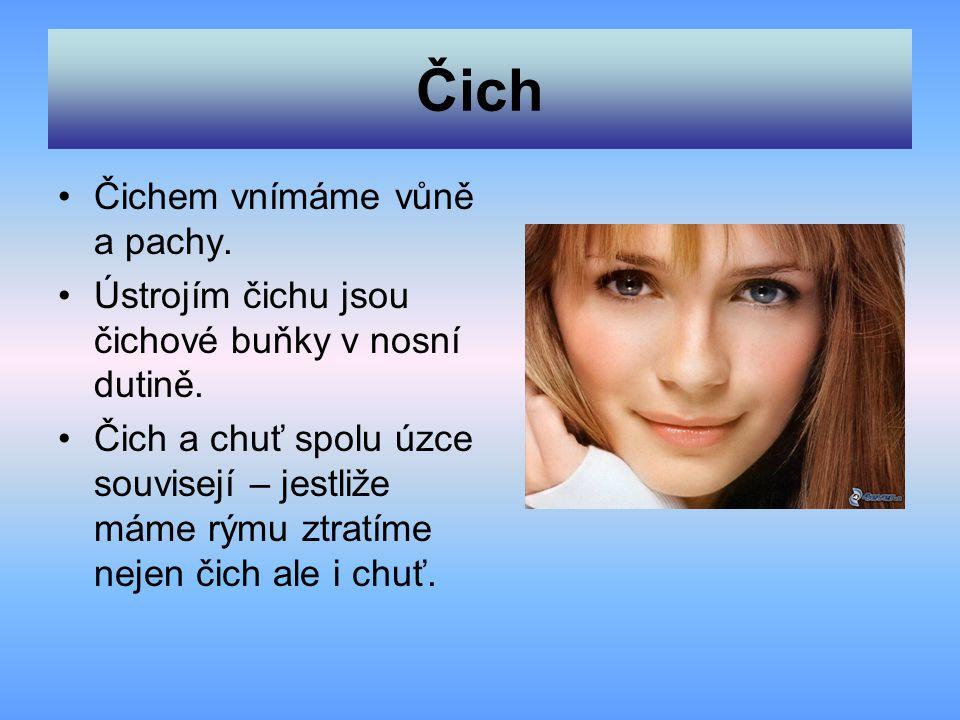 Čich Čichem vnímáme vůně a pachy.Ústrojím čichu jsou čichové buňky v nosní dutině.
