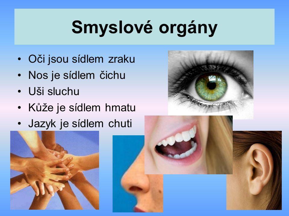 Smyslové orgány Oči jsou sídlem zraku Nos je sídlem čichu Uši sluchu Kůže je sídlem hmatu Jazyk je sídlem chuti