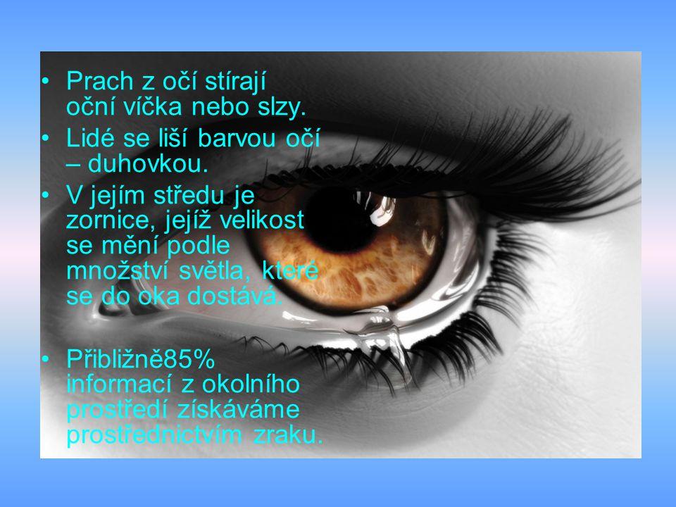 Prach z očí stírají oční víčka nebo slzy.Lidé se liší barvou očí – duhovkou.